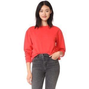 Anine Bing RARE Nantucket Vintage Sweatshirt XS